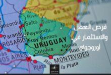 Photo of فرص العمل والاستثمار في أوروجواي