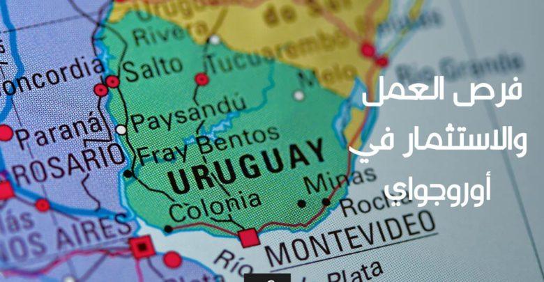 فرص العمل والاستثمار في أوروجواي