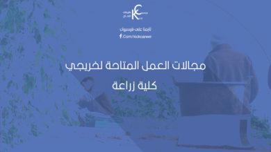 Photo of مجالات العمل المتاحة لخريجي كلية زراعة