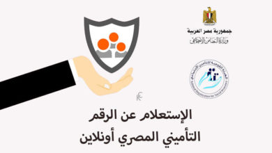الإستعلام عن الرقم التأميني المصري أونلاين