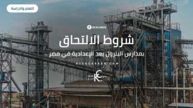 Photo of شروط الالتحاق بمدارس البترول بعد الإعدادية في مصر