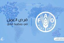 Photo of فرص العمل في منظمة الفاو