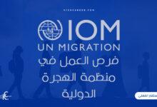 Photo of فرص العمل في منظمة الهجرة الدولية